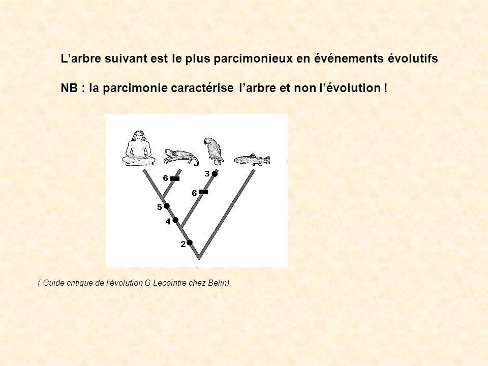 4 cladogrammes identiques: de forme en « V » ou en « U » et avec rotation au niveau des nœuds