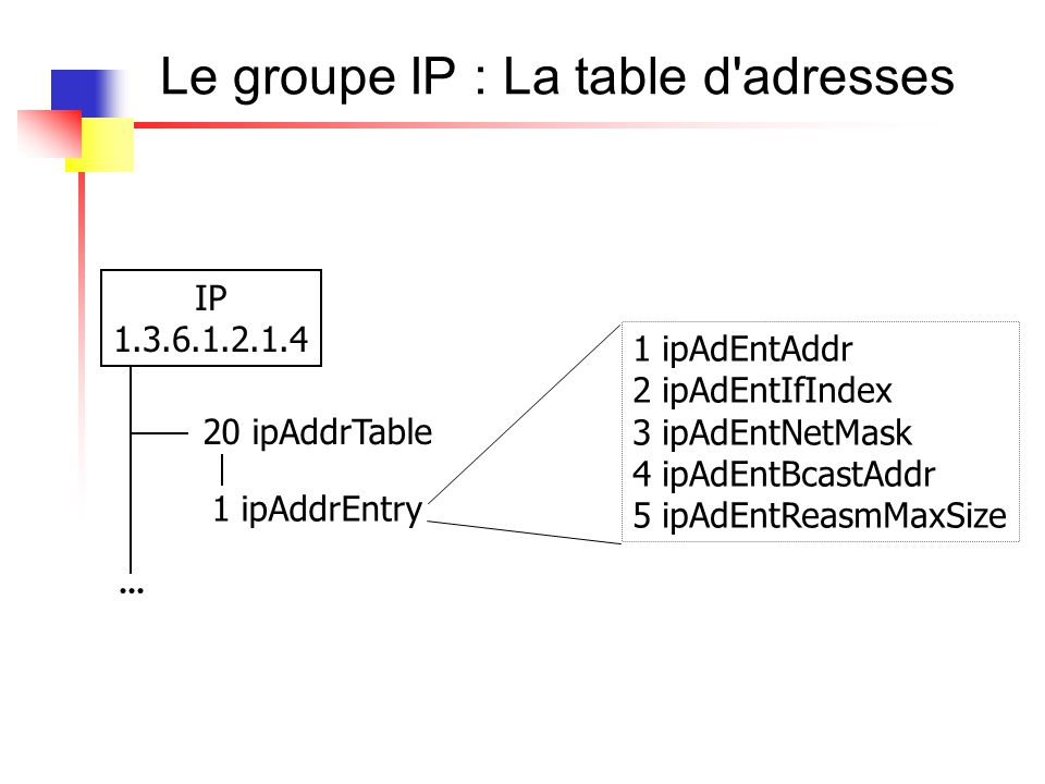 Le groupe ip : snmpwalk IP-MIB::ipAdEntAddr.194.57.88.50 = IpAddress: 194.57.88.50 IP-MIB::ipAdEntIfIndex.194.57.88.50 = INTEGER: 1 IP-MIB::ipAdEntNetMask.194.57.88.50 = IpAddress: 255.255.255.0 IP-MIB::ipAdEntBcastAddr.194.57.88.50 = INTEGER: 1 IP-MIB::ipAdEntReasmMaxSize.194.57.88.50 = INTEGER: 18024