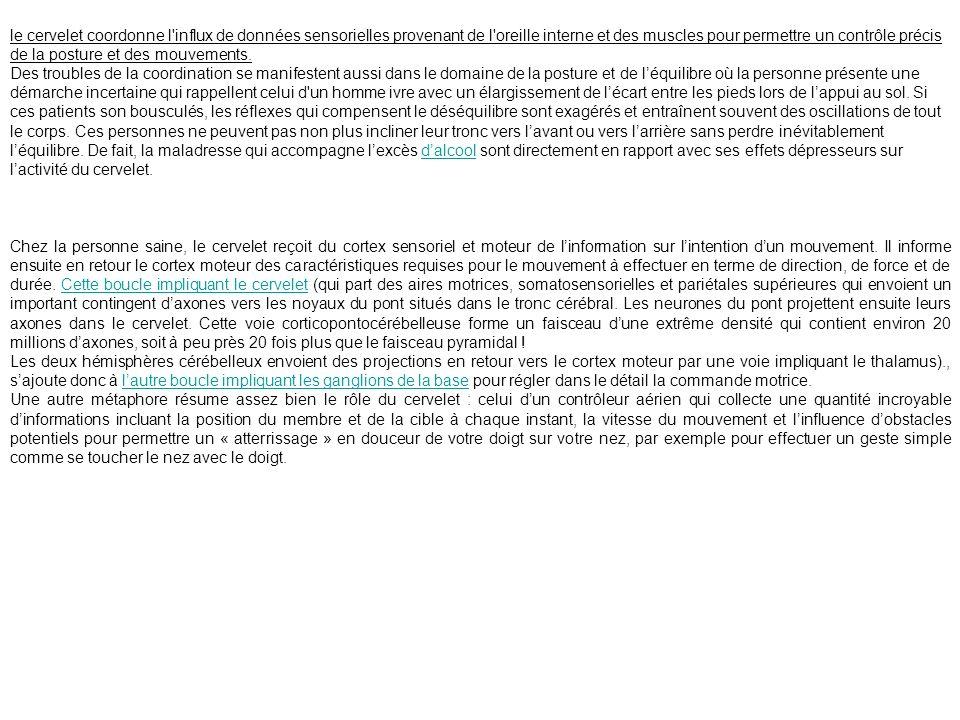 2) Hiérarchisation de lactivité motrice Le mouvement volontaire.