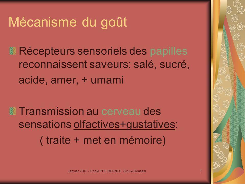 Janvier 2007 - Ecole PDE RENNES -Sylvie Boussel8 Reconnaissance des saveurs par les bougeons gustatifs cerveau