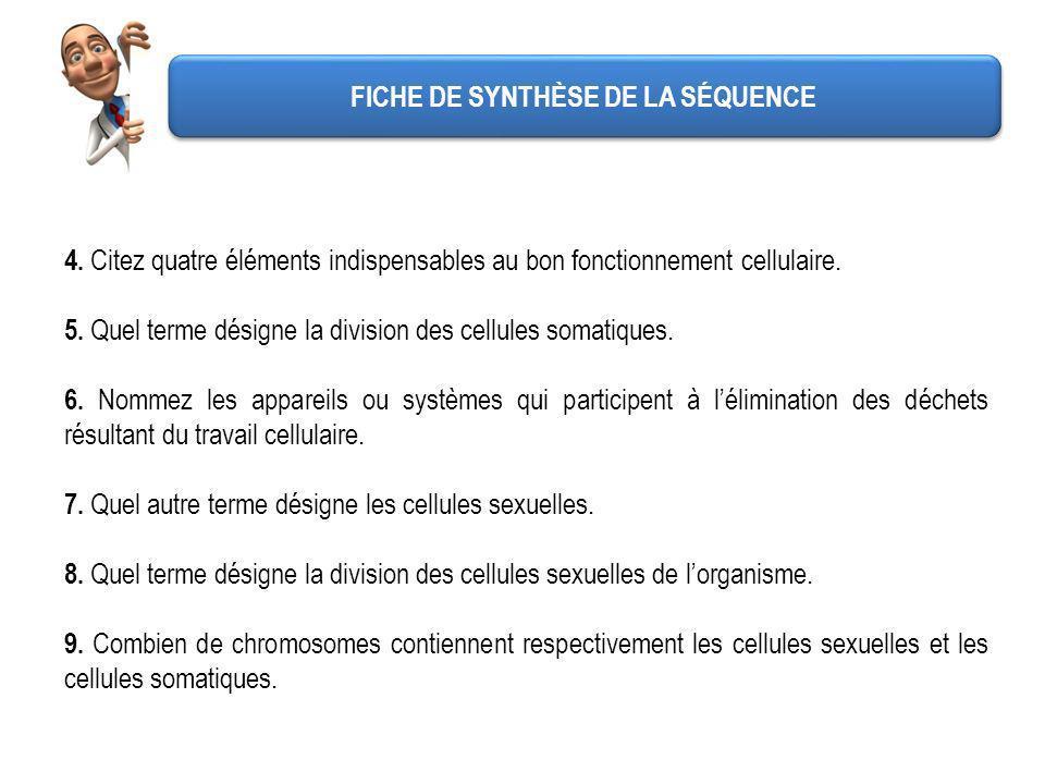 FICHE DE SYNTHÈSE DE LA SÉQUENCE 10.
