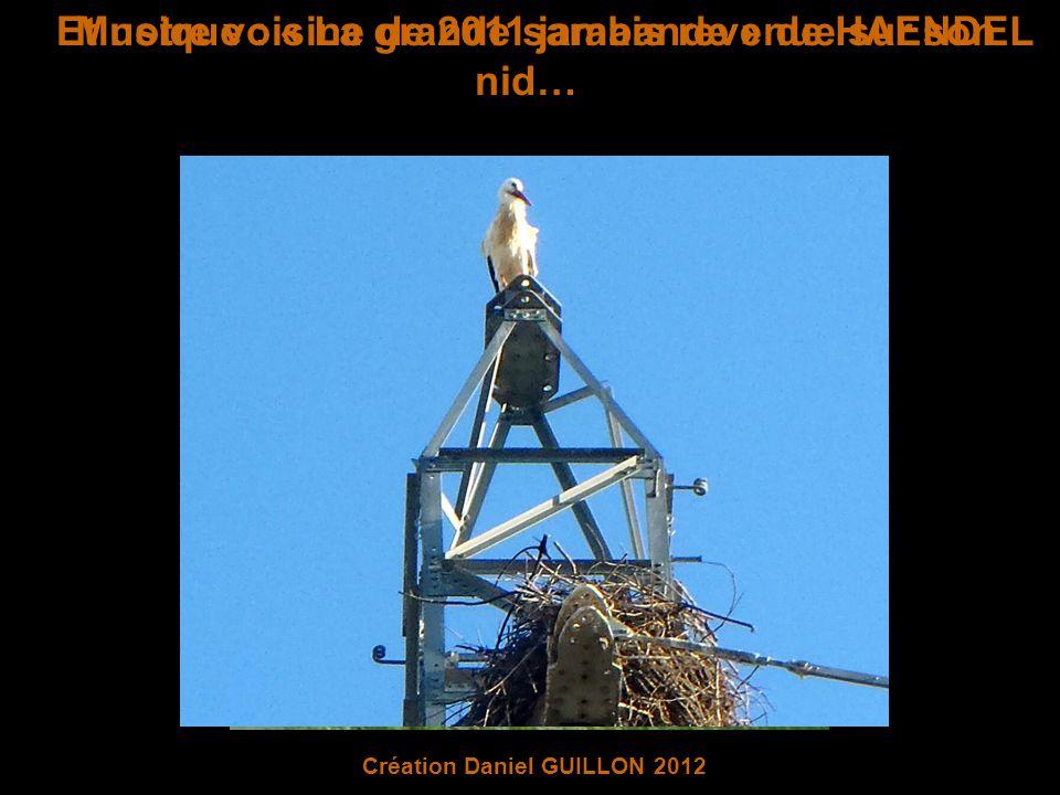 Et notre voisine de 2011 jamais revenue sur son nid… Musique : « La grande sarabande » de HAENDEL Création Daniel GUILLON 2012