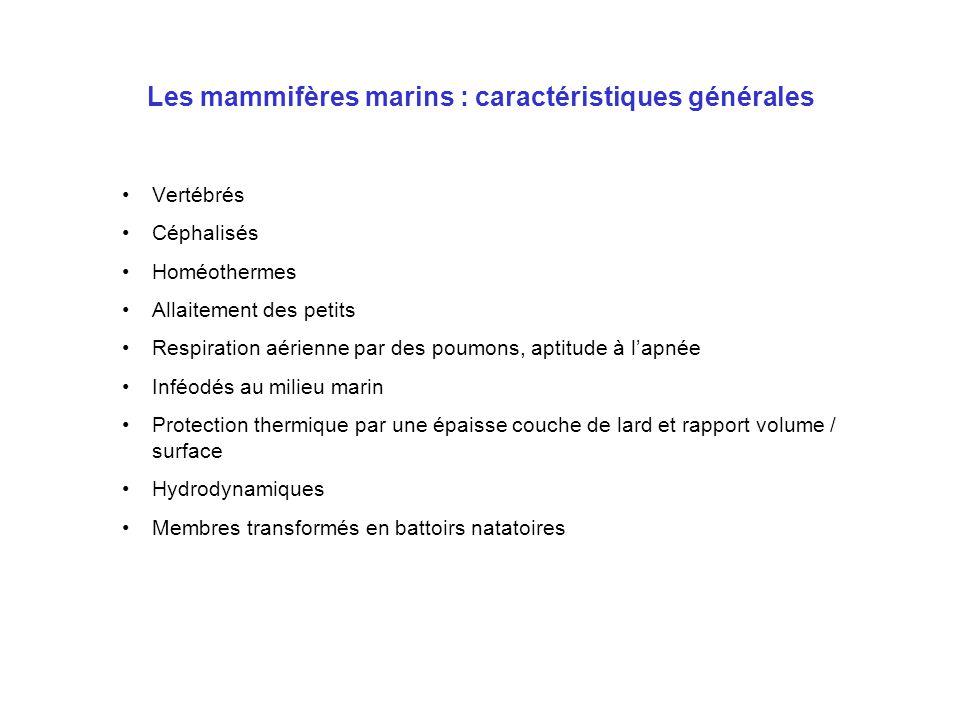 Les mammifères marins : aptitude à l'apnée O2 (ml/kg)% du total HOMME (70kg) Poumons (4,5L) 10,3 33,5 Sang (5L) 14,3 46,0 Muscles (16kg) 3,4 11,5 Eau tissulaire (40L) 2,8 9,0 Total 30,8 PHOQUE (35kg) Poumons (350mL) 1,8 3,5 Sang (4,5L) 37,5 72,5 Muscles (6kg) 9,0 17,5 Eau tissulaire (20L) 3,3 6,5 Total 51,6
