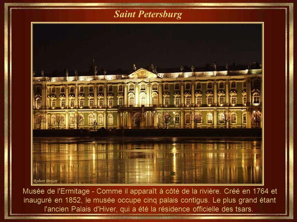 Saint Petersburg Musée de l Ermitage - Comme il apparaît à côté de la rivière.