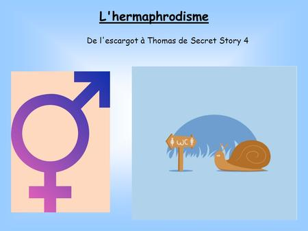 L'hermaphrodisme De l'escargot à Thomas de Secret Story 4.