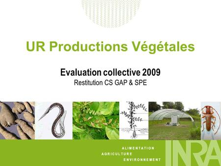 A L I M E N T A T I O N A G R I C U L T U R E E N V I R O N N E M E N T UR Productions Végétales Evaluation collective 2009 Restitution CS GAP & SPE.