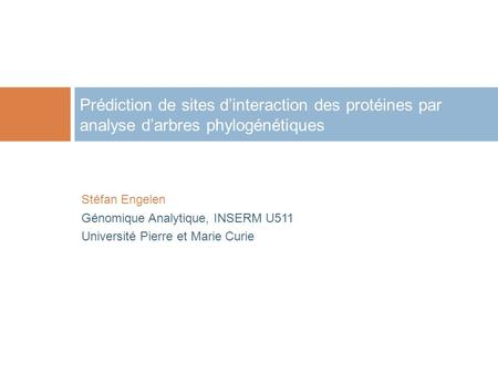 Prédiction de sites dinteraction des protéines par analyse darbres phylogénétiques Stéfan Engelen Génomique Analytique, INSERM U511 Université Pierre et.