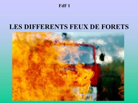LES DIFFERENTS FEUX DE FORETS