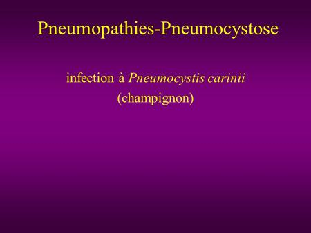 Pneumopathies-Pneumocystose infection à Pneumocystis carinii (champignon)