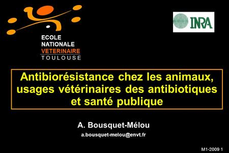 ECOLE NATIONALE VETERINAIRE T O U L O U S E