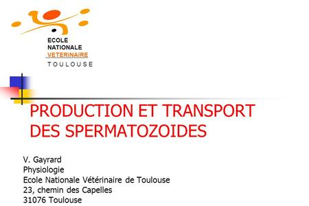 PRODUCTION ET TRANSPORT DES SPERMATOZOIDES V. Gayrard Physiologie Ecole Nationale Vétérinaire de Toulouse 23, chemin des Capelles 31076 Toulouse ECOLE.