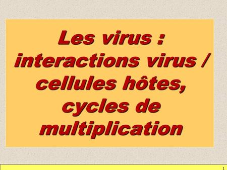 1 Les virus : interactions virus / cellules hôtes, cycles de multiplication.