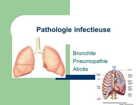Pathologie infectieuse Bronchite Pneumopathie Abcès.