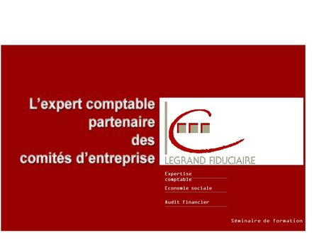 Audit financier Economie sociale Expertise comptable Séminaire de formation.