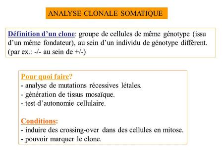 ANALYSE CLONALE SOMATIQUE