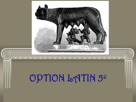 OPTION LATIN 5e.