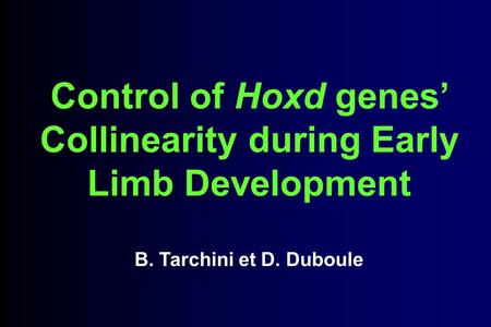 Control of Hoxd genes Collinearity during Early Limb Development B. Tarchini et D. Duboule.