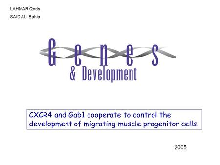 CXCR4 and Gab1 cooperate to control the development of migrating muscle progenitor cells. 2005 LAHMAR Qods SAID ALI Bahia.