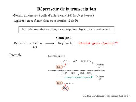 Répresseur de la transcription