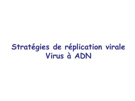 Stratégies de réplication virale Virus à ADN. Classification de virus (David Baltimore) +ARNm +ARN -ARN ±ARN-ARN +ARN-ADN±ADN +ADN rétrovirus.