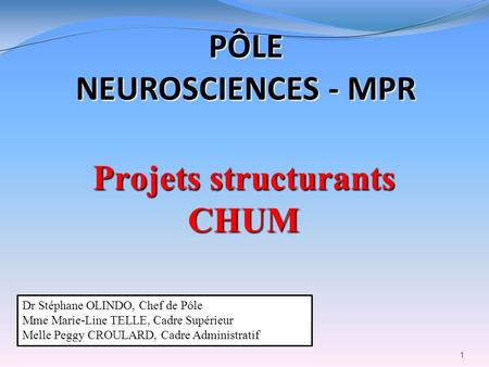 Projets structurants CHUM