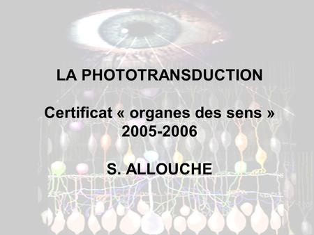 LA PHOTOTRANSDUCTION Certificat « organes des sens » 2005-2006 S. ALLOUCHE.