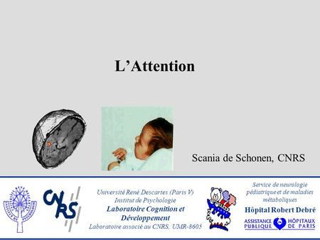 LAttention Scania de Schonen, CNRS Université René Descartes (Paris V) Institut de Psychologie Laboratoire Cognition et Développement Laboratoire associé