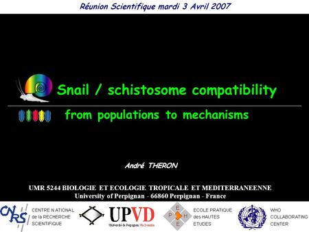 Snail / schistosome compatibility Réunion Scientifique mardi 3 Avril 2007 André THERON UMR 5244 BIOLOGIE ET ECOLOGIE TROPICALE ET MEDITERRANEENNE University.