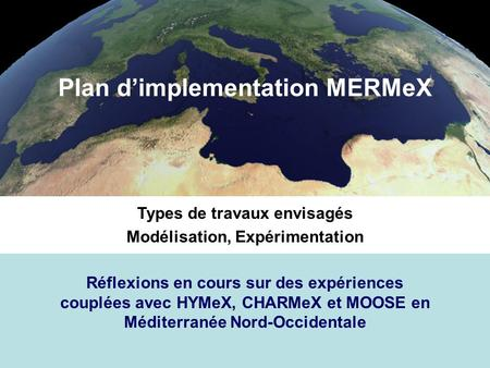 Plan d'implementation MERMeX