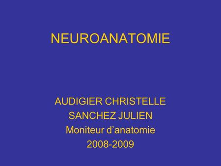 NEUROANATOMIE AUDIGIER CHRISTELLE SANCHEZ JULIEN Moniteur danatomie 2008-2009.