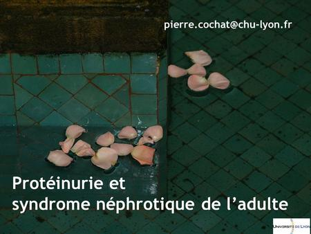 syndrome néphrotique de l'adulte