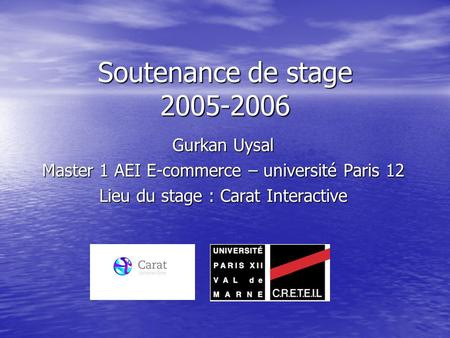 Soutenance de stage 2005-2006 Gurkan Uysal Master 1 AEI E-commerce – université Paris 12 Lieu du stage : Carat Interactive.