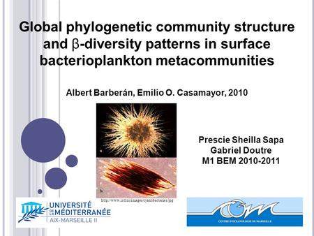 Prescie Sheilla Sapa Gabriel Doutre M1 BEM 2010-2011 Global phylogenetic community structure and β-diversity patterns in surface bacterioplankton metacommunities.