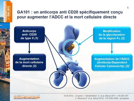 GA101 : un anticorps anti CD20 spécifiquement conçu pour augmenter l'ADCC et la mort cellulaire directe Anticorps anti- CD20 de type II (1) Modification.