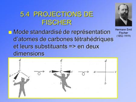 5.4 PROJECTIONS DE FISCHER
