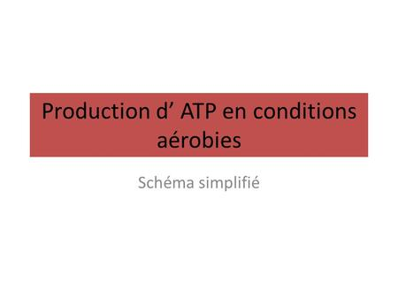 Production d' ATP en conditions aérobies Schéma simplifié.