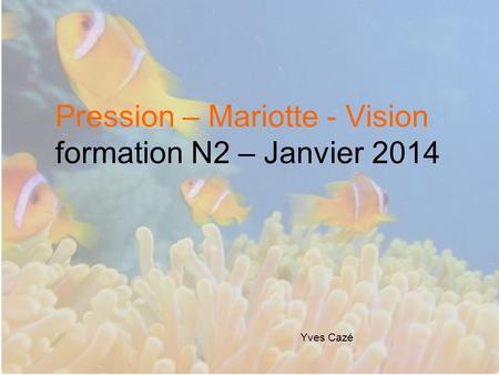 Pression – Mariotte - Vision formation N2 – Janvier 2014 Yves Cazé.