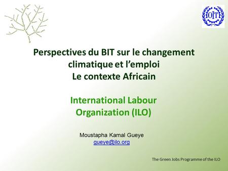 The Green Jobs Programme of the ILO Perspectives du BIT sur le changement climatique et l'emploi Le contexte Africain International Labour Organization.