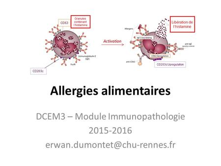 Allergies alimentaires DCEM3 – Module Immunopathologie 2015-2016 Activation.