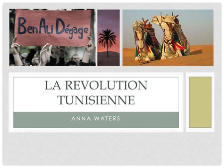 La revolution tunisienne