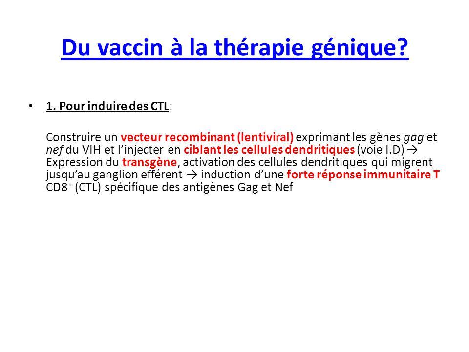 Du vaccin à la thérapie génique 2.