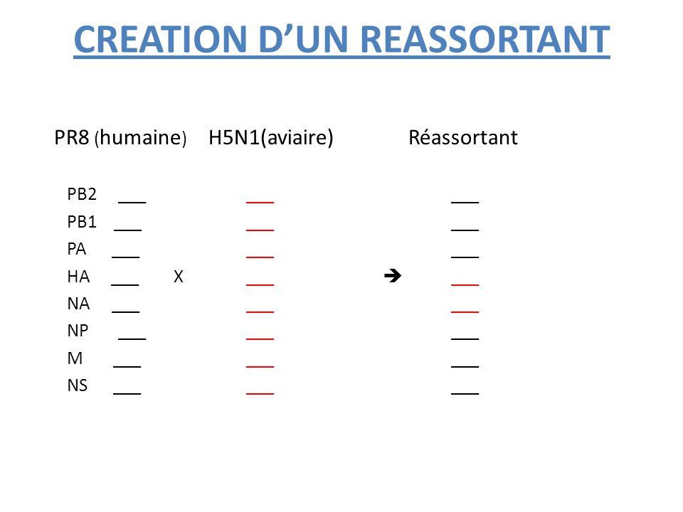 Autres vaccins récents: Vaccins « VLP » Les 'VLP' (virus-like particles) sont des particules virales sans génome (pseudo-virions) résultant de l'assemblage spontané des protéines de capside d'un virus: on les obtient en général par expression des gènes correspondants dans des levures ou des bactéries recombinantes ou par l'intermédiaire d'un baculovirus recombinant en cellules d'insectes.