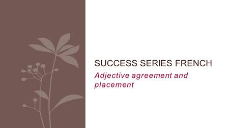 Adjective agreement and placement SUCCESS SERIES FRENCH.