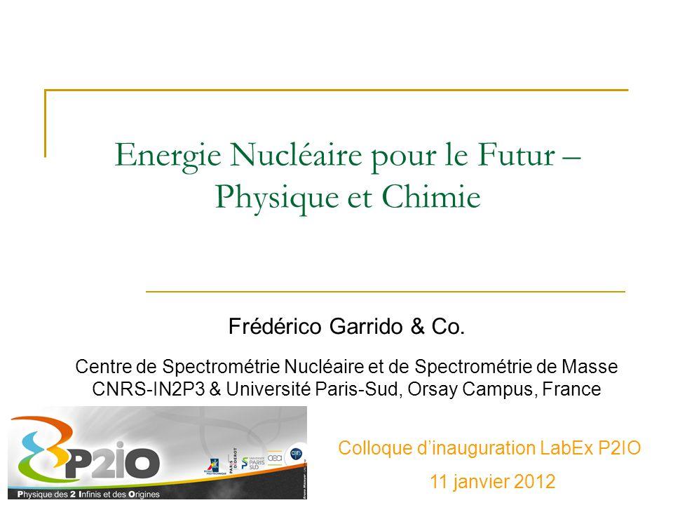 Forces en présence – Revue d'effectifs Centre de Spectrométrie Nucléaire et de Spectrométrie de Masse (CNRS-IN2P3-Université Paris-Sud) – 7 personnes  Groupes PCI (Physico-Chimie de l'Irradiation) et PS (Physique des Solides) Institut de Physique Nucléaire (CNRS-IN2P3-Université Paris-Sud) – 21 personnes  Groupes PACS (Physique de l'Aval du Cycle et de la Spallation) et Radiochimie IRFU (CEA/DSM) – 4 personnes SERMA (CEA/DEN) - 5 personnes