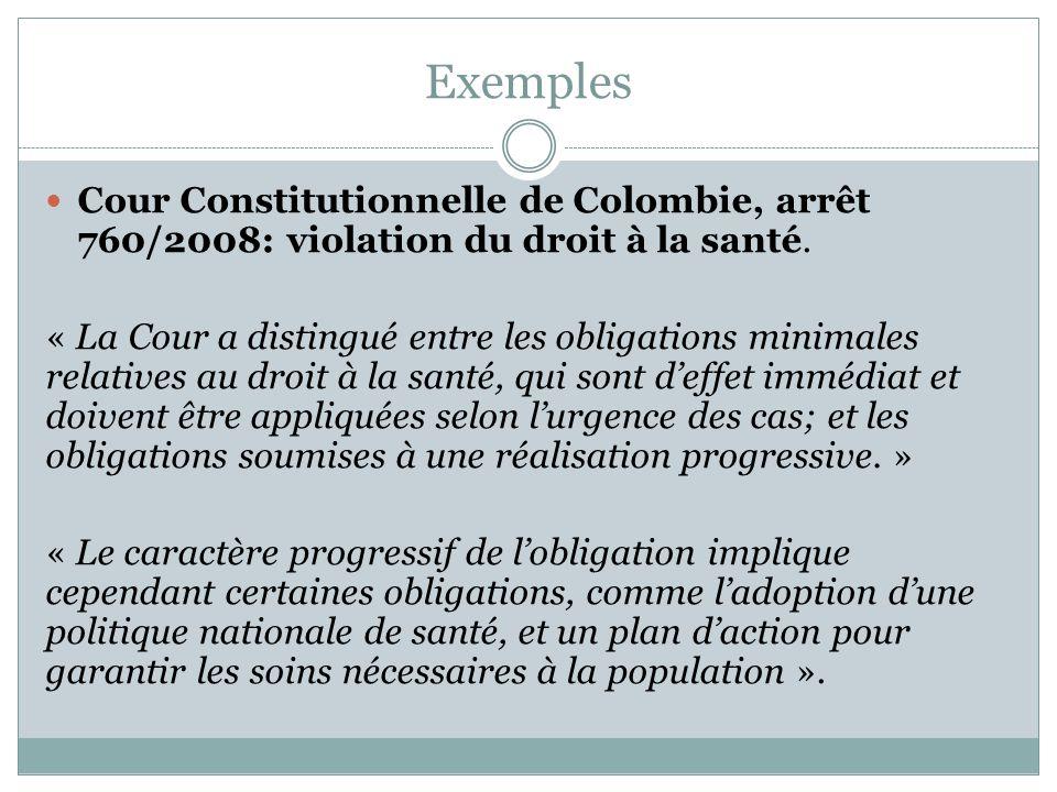 Exemples (suite) Commission Africaine des Droits de l'Homme et des Peuples, arrêt 155/96, 2001: violation du droit à l'environnement, à la santé et au logement.