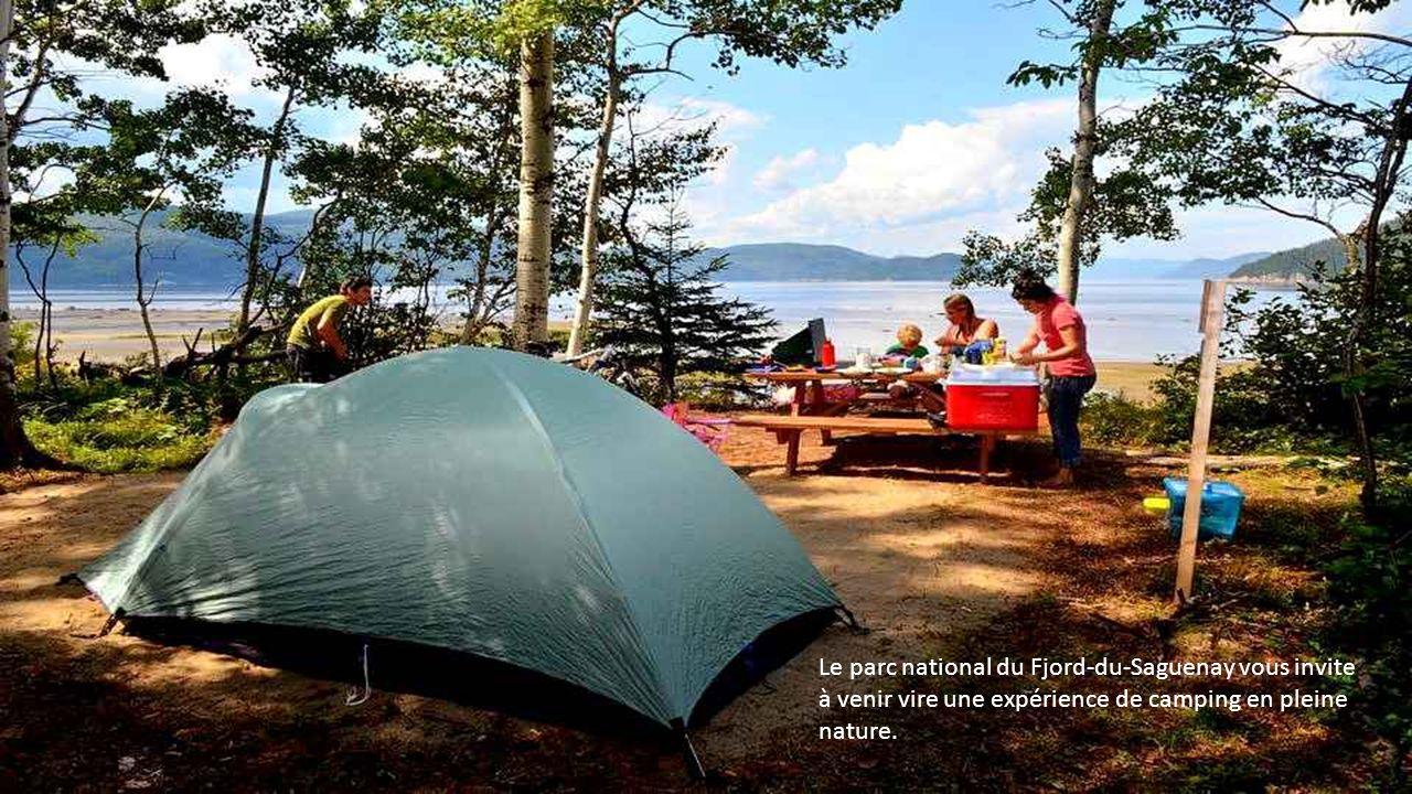 Le parc national du Fjord-du-Saguenay vous invite à venir vire une expérience de camping en pleine nature.