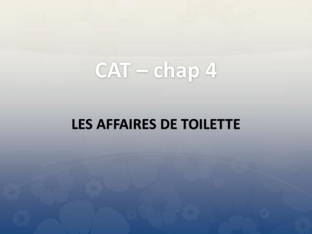LES AFFAIRES DE TOILETTE