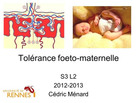 Tolérance foeto-maternelle