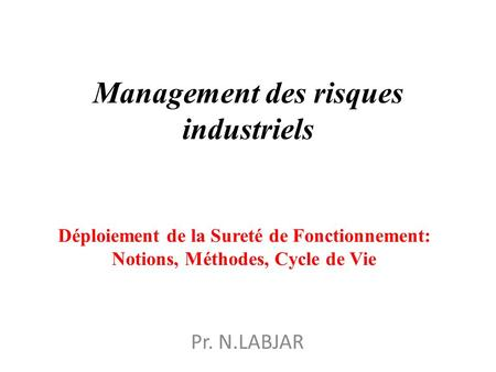 Management des risques industriels
