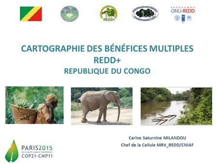 CARTOGRAPHIE DES BÉNÉFICES MULTIPLES REDD+ REPUBLIQUE DU CONGO Carine Saturnine MILANDOU Chef de la Cellule MRV_REDD/CNIAF.